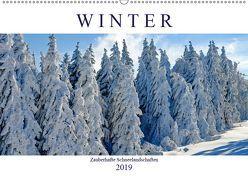 Winter. Zauberhafte Schneelandschaften (Wandkalender 2019 DIN A2 quer) von Hurley,  Rose