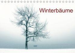Winterbäume (Tischkalender 2018 DIN A5 quer) von Kruse,  Joana