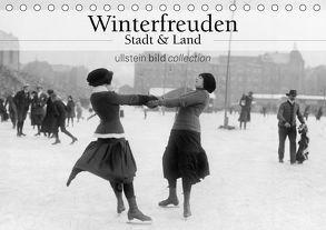 Winterfreuden – Stadt und Land (Tischkalender 2018 DIN A5 quer) von bild Axel Springer Syndication GmbH,  ullstein