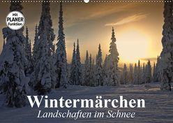 Wintermärchen. Landschaften im Schnee (Wandkalender 2019 DIN A2 quer) von Stanzer,  Elisabeth