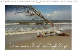 Winterzauber Fischland-Darß-Zingst (Wandkalender 2019 DIN A4 quer) von Grobelnx,  Renate