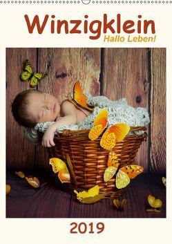 Winzigklein – Hallo Leben! (Wandkalender 2019 DIN A2 hoch) von :: Fotodesign,  HETIZIA