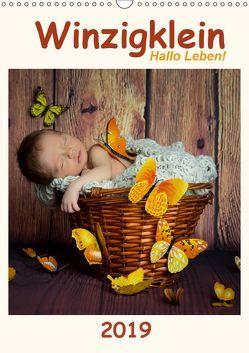 Winzigklein – Hallo Leben! (Wandkalender 2019 DIN A3 hoch)