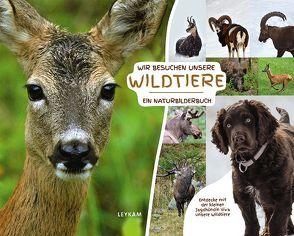 Wir besuchen unsere Wildtiere – Ein Naturbilderbuch von Flick,  Ingrid, Rothmann,  Georg