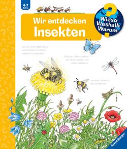 Wir entdecken Insekten von Weinhold,  Angela