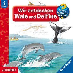 Wir entdecken Wale und Delfine von Mierau,  Jenny, Missler,  Robert