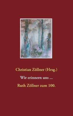 Wir erinnern uns … von Zöllner,  Christian