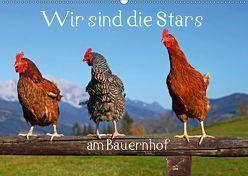 Wir sind die Stars am Bauernhof (Wandkalender 2019 DIN A2 quer) von Kramer,  Christa