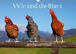 Wir sind die Stars am Bauernhof (Wandkalender 2019 DIN A3 quer)