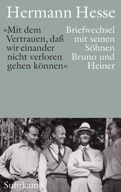 »Wir wollen es trotz allem Schwierigen immer wieder probieren« von Hesse,  Hermann, Limberg,  Michael