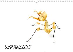 WIRBELLOS (Wandkalender 2020 DIN A4 quer) von Trapp,  Benny