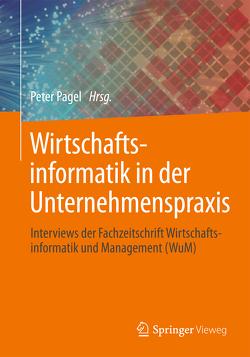 Wirtschaftsinformatik in der Unternehmenspraxis von Pagel,  Peter