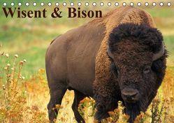 Wisent & Bison (Tischkalender immerwährend DIN A5 quer) von Stanzer,  Elisabeth