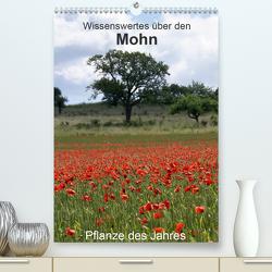 Wissenswertes über den Mohn – Pflanze des Jahres (Premium, hochwertiger DIN A2 Wandkalender 2020, Kunstdruck in Hochglanz) von Schmitt,  Georg