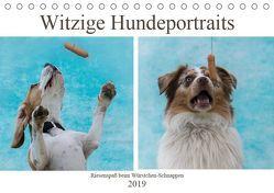 Witzige Hundeportraits – Riesenspaß beim Würstchen-Schnappen (Tischkalender 2019 DIN A5 quer) von Teßen,  Sonja