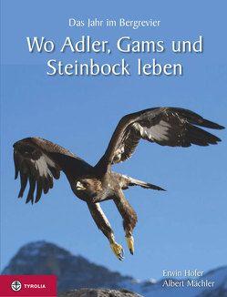 Wo Adler, Gams und Steinbock leben von Hofer,  Erwin, Mächler,  Albert