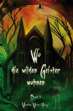Wo die wilden Geister wohnen von Meier,  Martina