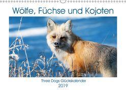 Wölfe, Füchse und Kojoten (Wandkalender 2019 DIN A3 quer) von Malin,  Jana