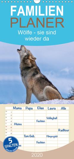 Wölfe – sie sind wieder da – Familienplaner hoch (Wandkalender 2020 , 21 cm x 45 cm, hoch) von Roder,  Peter