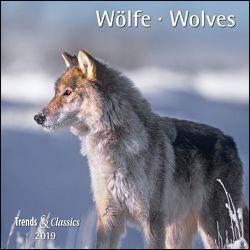 Wölfe Wolves 2019 – Broschürenkalender – Wandkalender – mit herausnehmbarem Poster – Format 30 x 30 cm von DUMONT Kalenderverlag