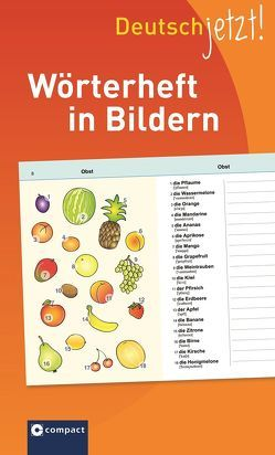 Deutsch jetzt! Wörterheft in Bildern von Fischer,  Anke, Kaufmann,  Astrid