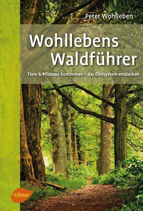 Wohllebens Waldführer von Wohlleben,  Peter