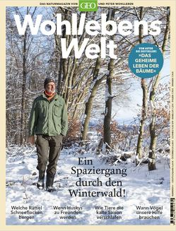 Wohllebens Welt – Ein Spaziergang durch den Winterwald von Wohlleben,  Peter