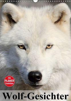 Wolf-Gesichter (Wandkalender 2019 DIN A3 hoch) von Stanzer,  Elisabeth