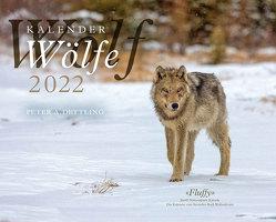 Wolfskalender 2022 von Dettling,  Peter A.