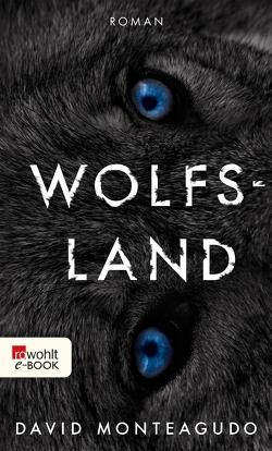 Wolfsland von Monteagudo,  David, Strobel,  Matthias