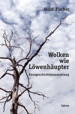 Wolken wie Löwenhäupter von Fischer,  Heidi