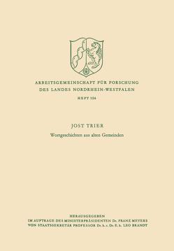 Wortgeschichten aus alten Gemeinden von Trier,  Jost