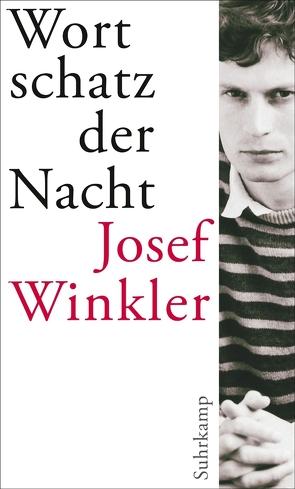 Wortschatz der Nacht von Winkler,  Josef