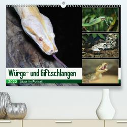 Würge- und Giftschlangen (Premium, hochwertiger DIN A2 Wandkalender 2020, Kunstdruck in Hochglanz) von N.,  N.