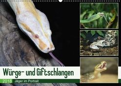 Würge- und Giftschlangen (Wandkalender 2018 DIN A2 quer) von N.,  N.
