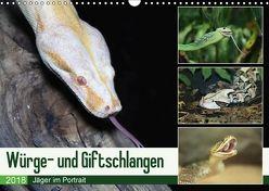 Würge- und Giftschlangen (Wandkalender 2018 DIN A3 quer) von N.,  N.