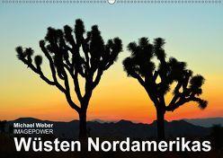 Wüsten Nordamerikas (Wandkalender 2018 DIN A2 quer) von Weber,  Michael