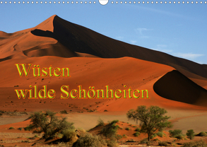 Wüsten, wilde Schönheiten (Wandkalender 2020 DIN A3 quer) von Müller,  Erika