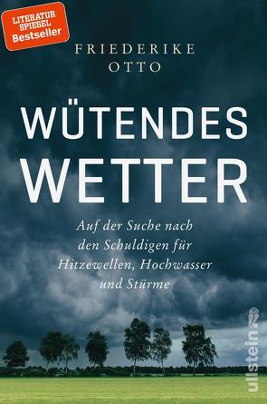 Wütendes Wetter von Otto,  Friederike, von Brackel,  Benjamin