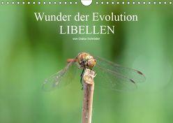 Wunder der Evolution Libellen (Wandkalender 2019 DIN A4 quer) von Schröder,  Diana