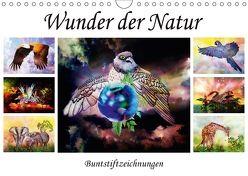 Wunder der Natur – Buntstiftzeichnungen (Wandkalender 2018 DIN A4 quer) von Djeric,  Dusanka