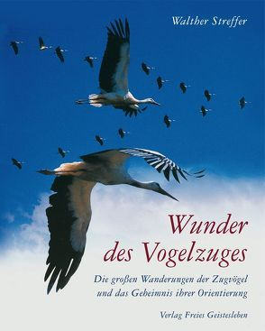 Wunder des Vogelzuges von Streffer,  Walther