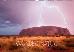 Wunder Natur II (Wandkalender 2019 DIN A2 quer) von Schaarschmidt,  Christoph
