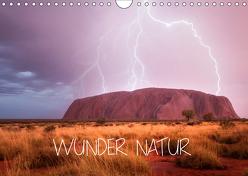 Wunder Natur II (Wandkalender 2019 DIN A4 quer) von Schaarschmidt,  Christoph