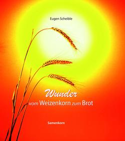 Wunder vom Weizenkorn zum Brot von Scheible,  Eugen