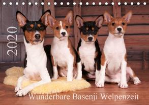 Wunderbare Basenji Welpenzeit (Tischkalender 2020 DIN A5 quer) von Joswig,  Angelika