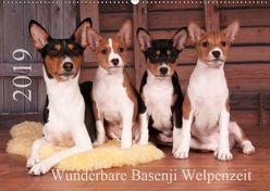 Wunderbare Basenji Welpenzeit (Wandkalender 2019 DIN A2 quer) von Joswig,  Angelika