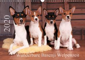 Wunderbare Basenji Welpenzeit (Wandkalender 2020 DIN A3 quer) von Joswig,  Angelika