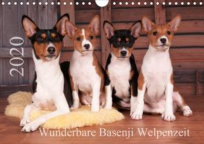 Wunderbare Basenji Welpenzeit (Wandkalender 2020 DIN A4 quer) von Joswig,  Angelika