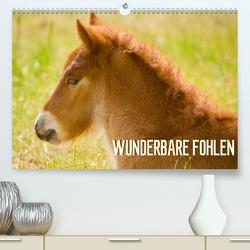 Wunderbare Fohlen (Premium, hochwertiger DIN A2 Wandkalender 2020, Kunstdruck in Hochglanz) von Schmidt,  Brinja